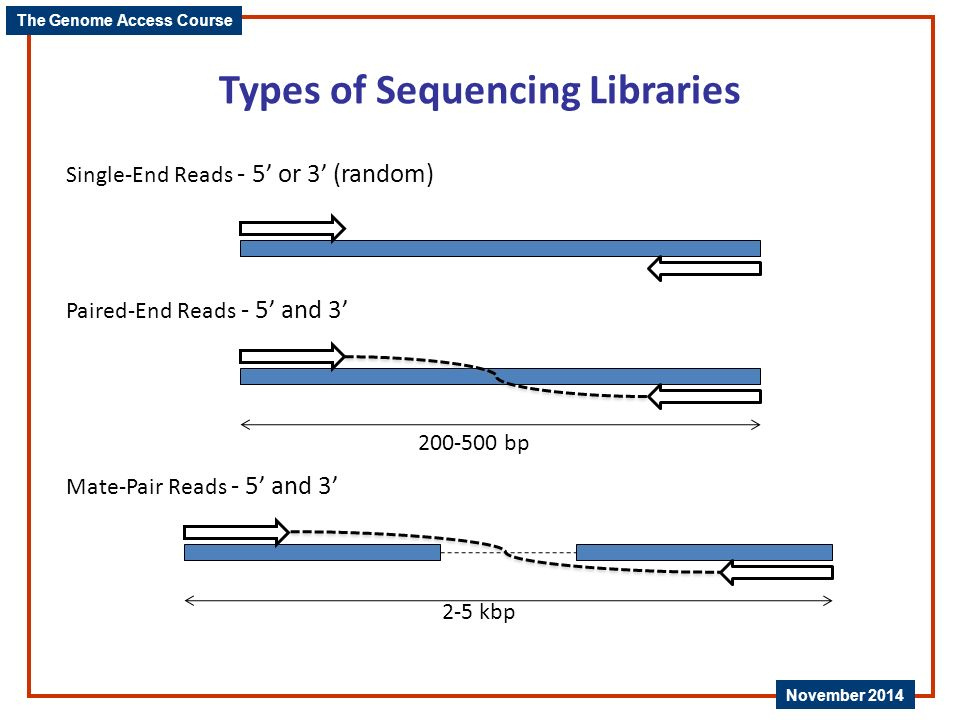 Types of Sequencing Libraries