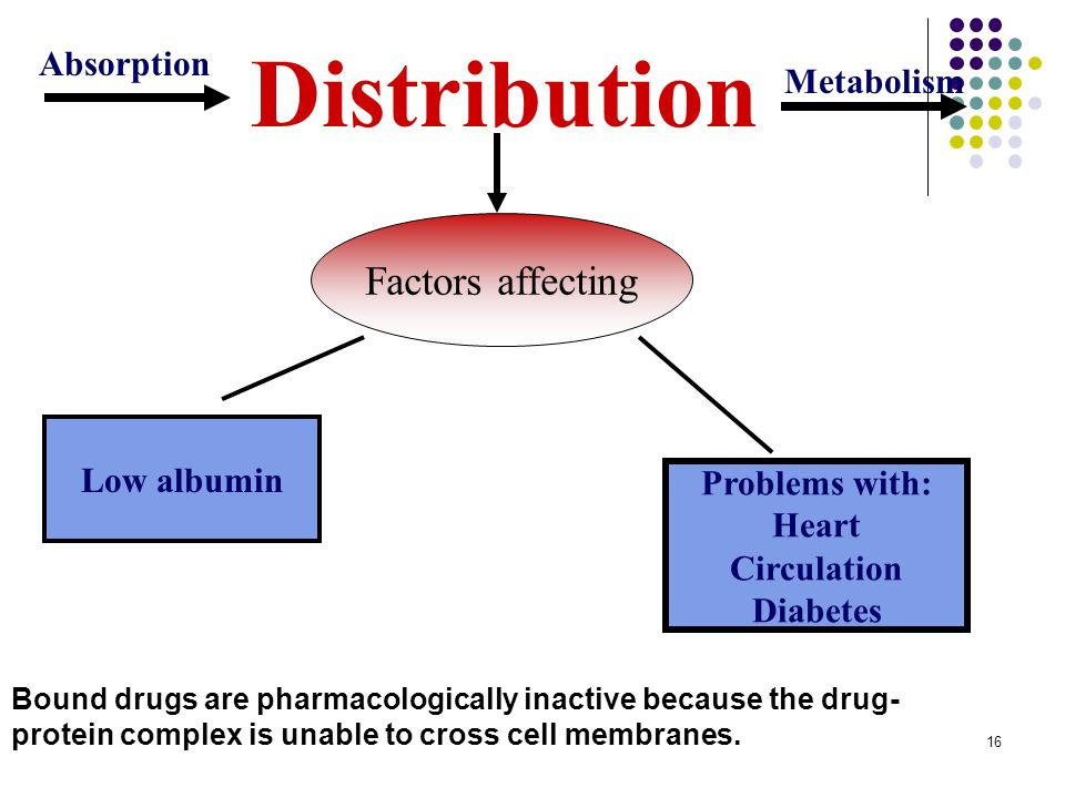 Distribution Factors affecting Absorption Metabolism Low albumin