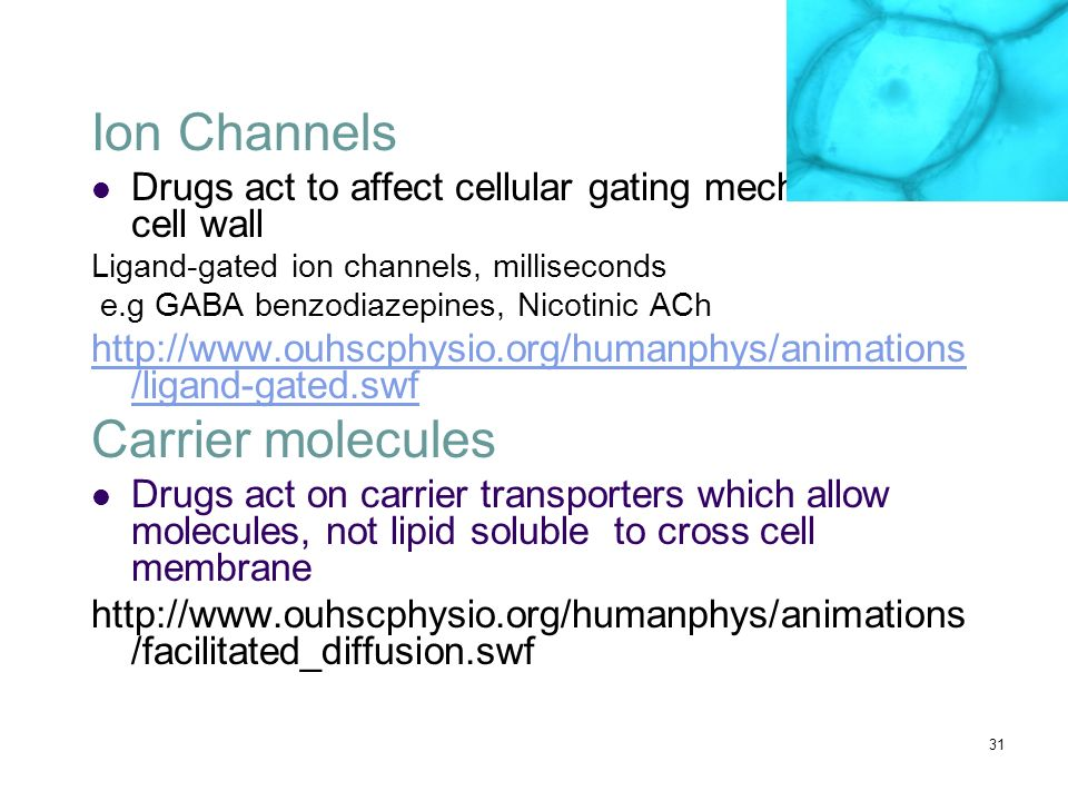 Ion Channels Carrier molecules