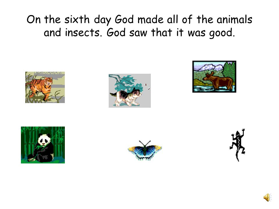 On the sixth day God made all of the animals and insects