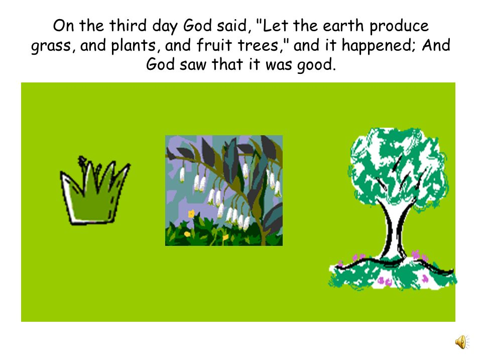On the third day God said, Let the earth produce grass, and plants, and fruit trees, and it happened; And God saw that it was good.