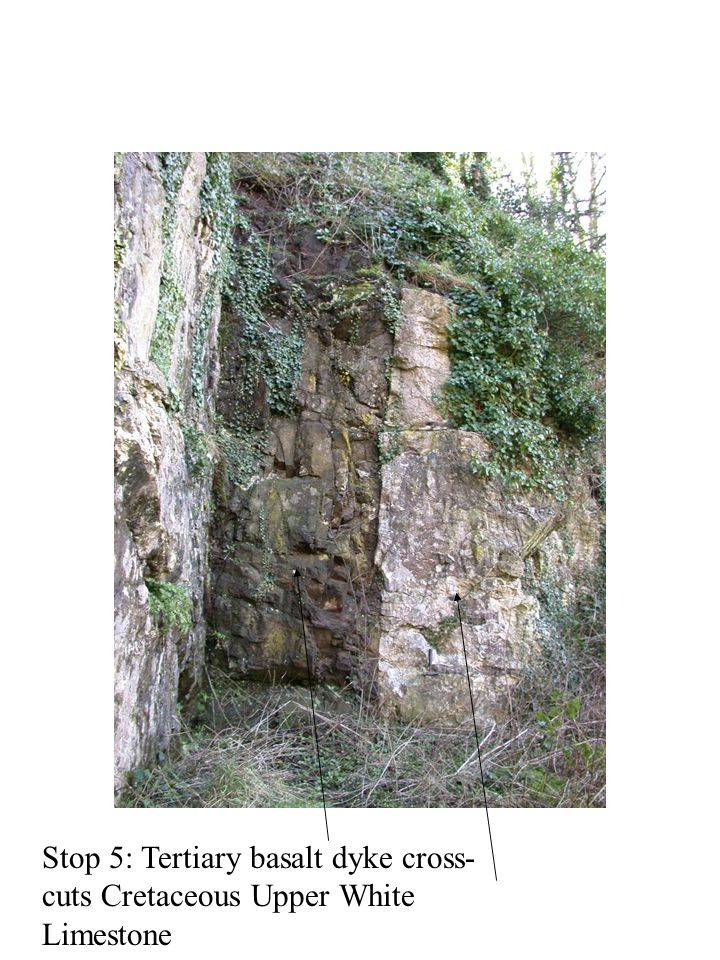 Stop 5: Tertiary basalt dyke cross-cuts Cretaceous Upper White Limestone