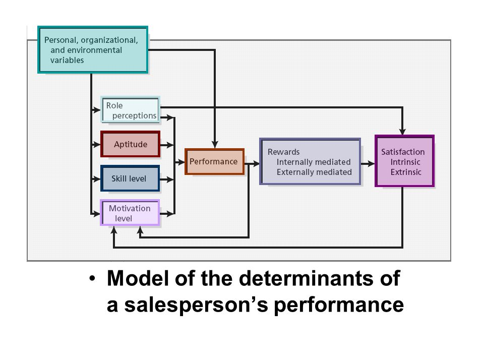 determinants of job performance Job performance assesses whether a person performs a job well job performance,  campbell (1990) also suggested determinants of performance components individual .