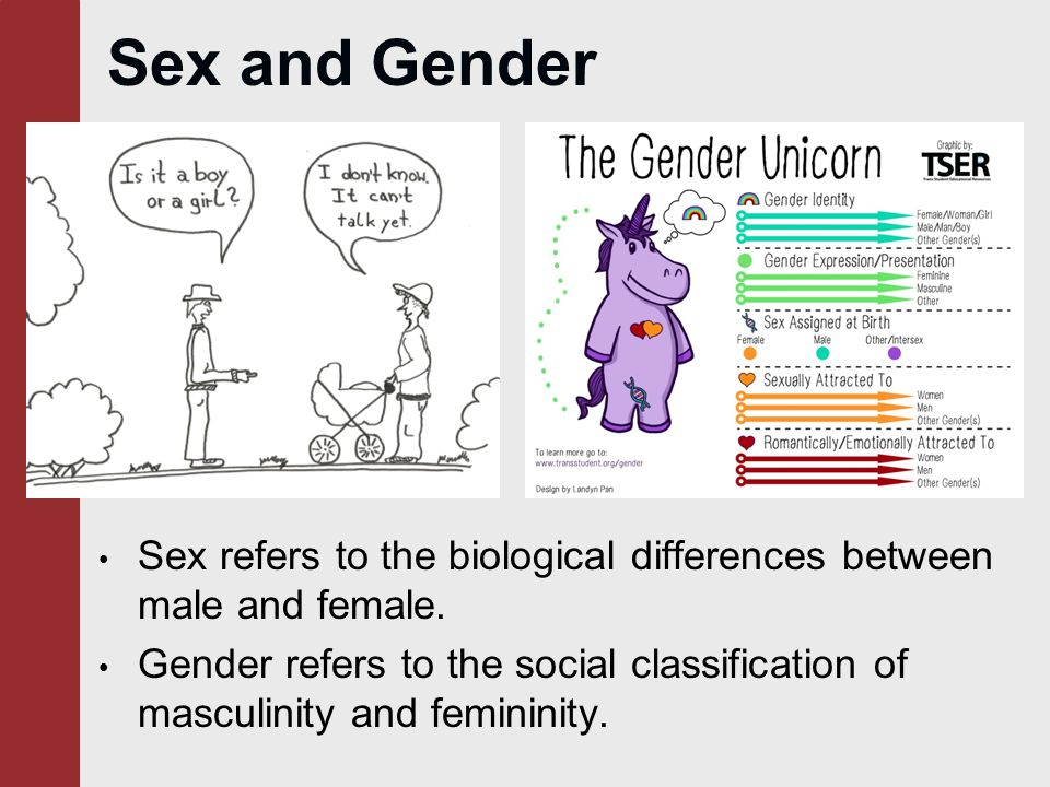 Really. agree The difference between sex and gender