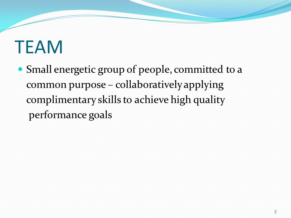 TEAM Small energetic group of people, committed to a