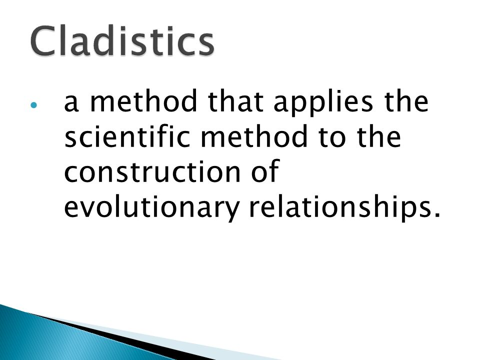 Cladistics a method that applies the scientific method to the construction of evolutionary relationships.