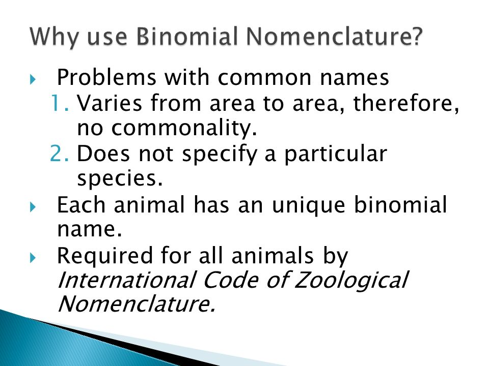 Why use Binomial Nomenclature
