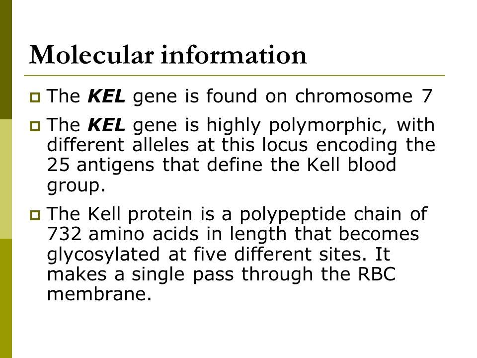 Molecular information