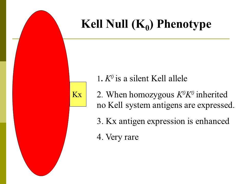 Kell Null (K0) Phenotype