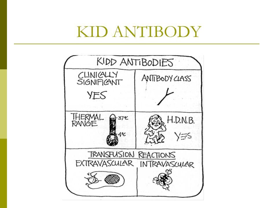 KID ANTIBODY