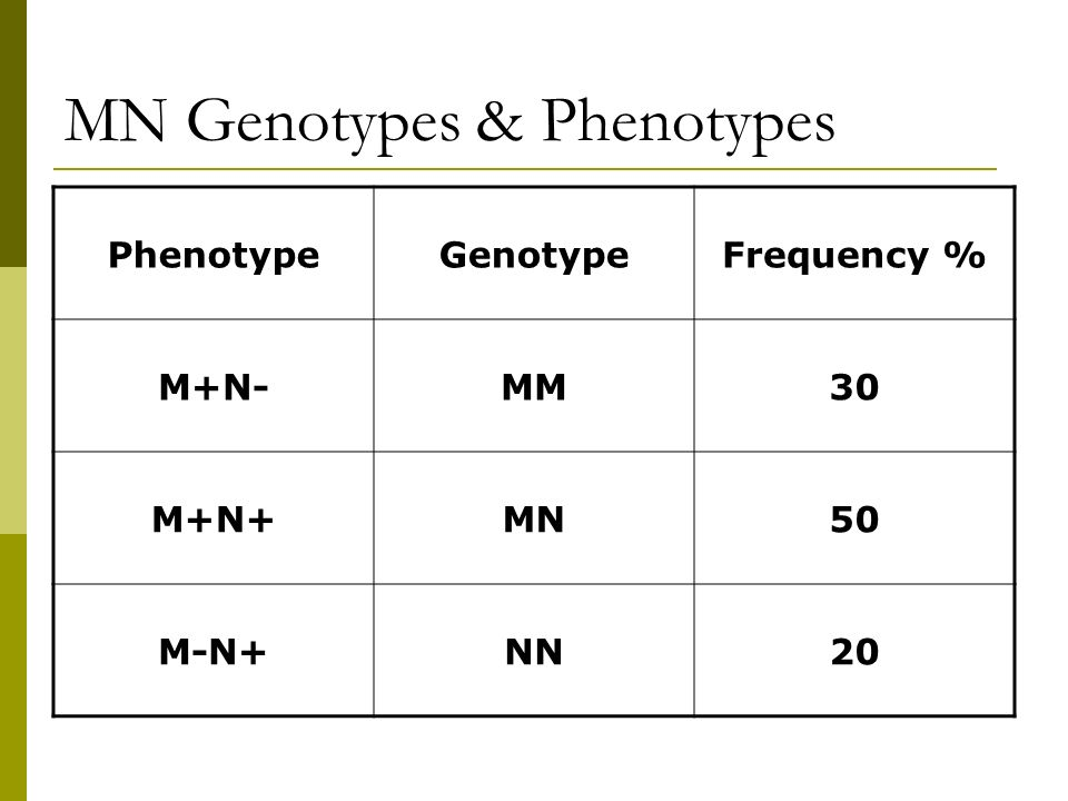 MN Genotypes & Phenotypes
