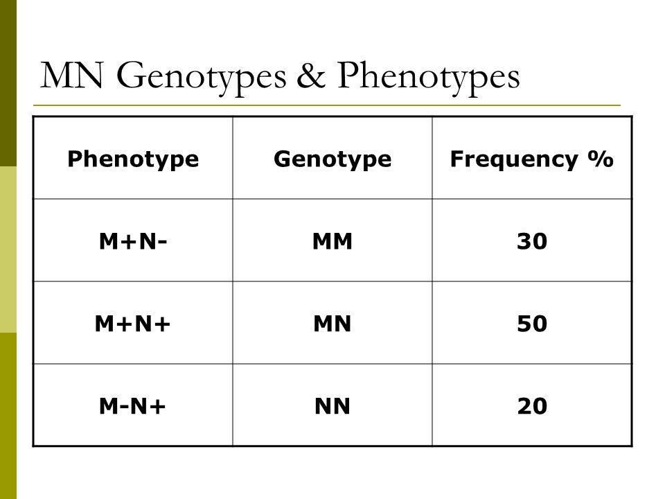 MN Genotypes & Phenotypes