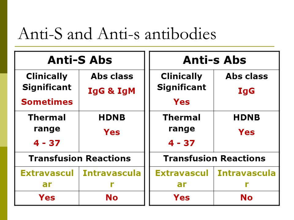 Anti-S and Anti-s antibodies