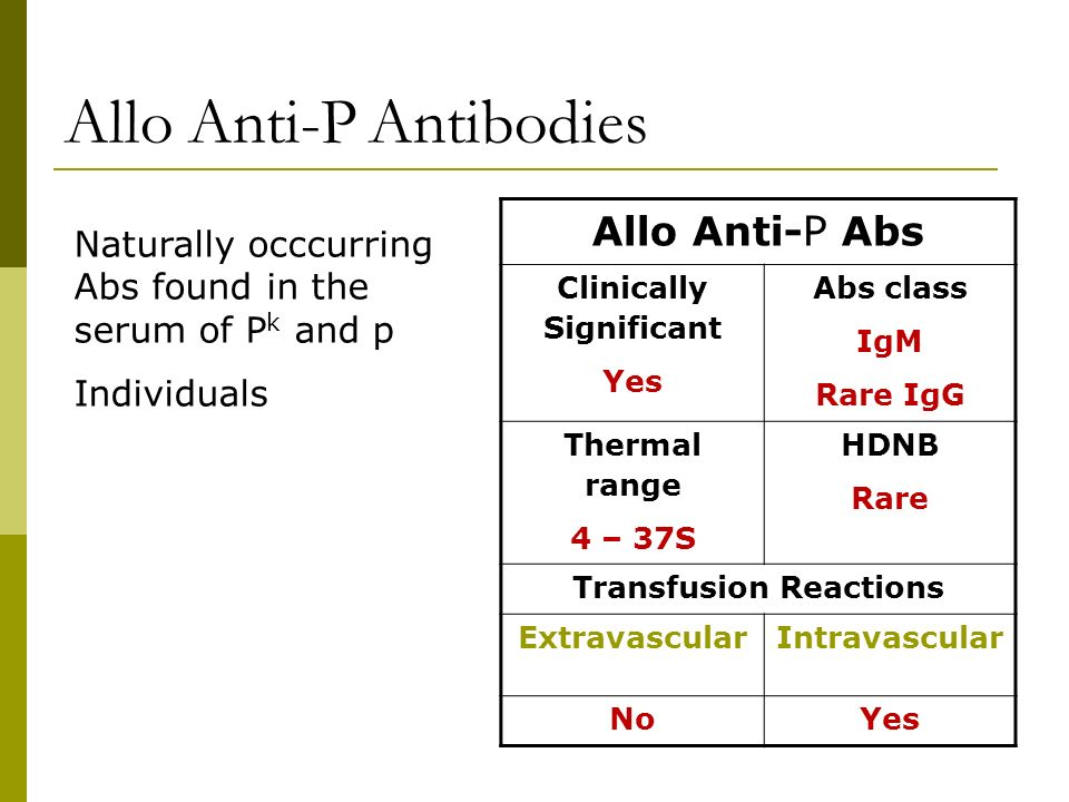 Allo Anti-P Antibodies