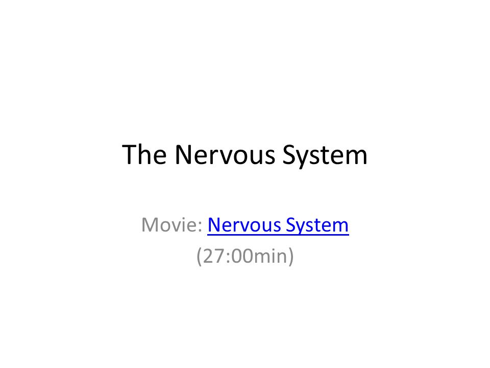 Movie: Nervous System (27:00min)
