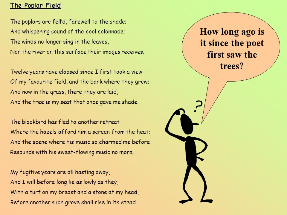 How long ago is it since the poet first saw the trees