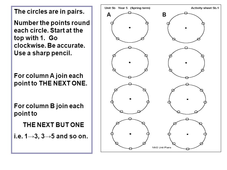 The circles are in pairs.