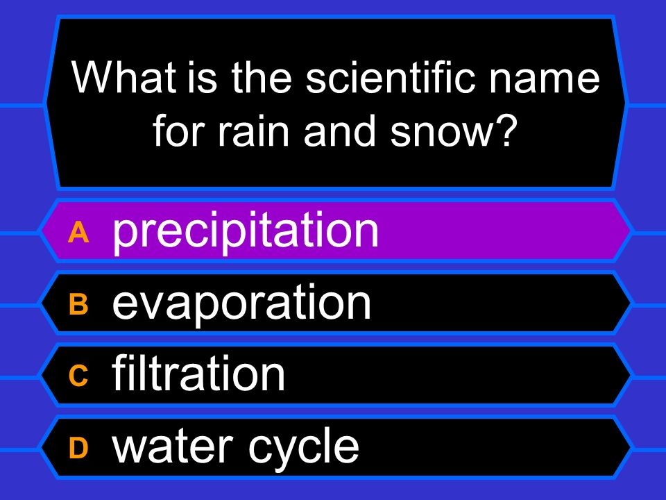 What is the scientific name for rain and snow