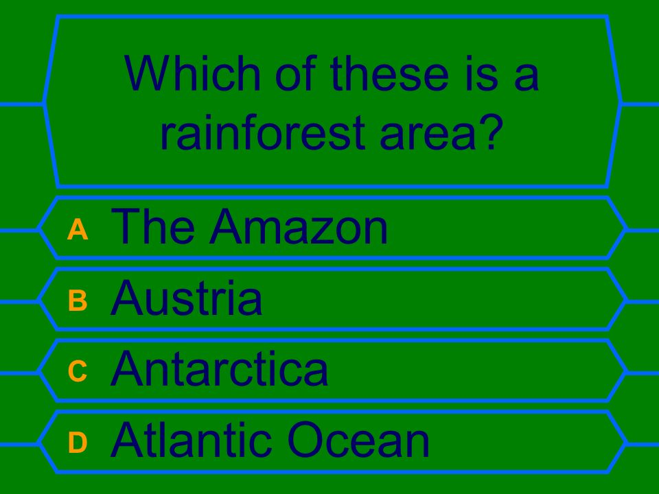 Which of these is a rainforest area