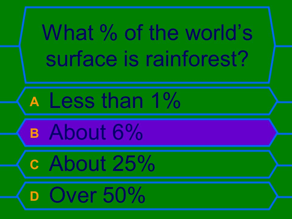 What % of the world's surface is rainforest