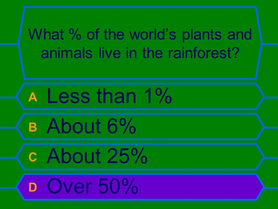 What % of the world's plants and animals live in the rainforest