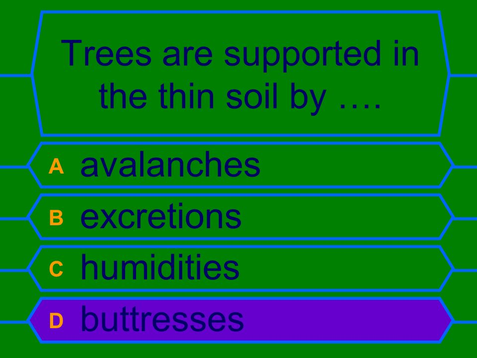 Trees are supported in the thin soil by ….