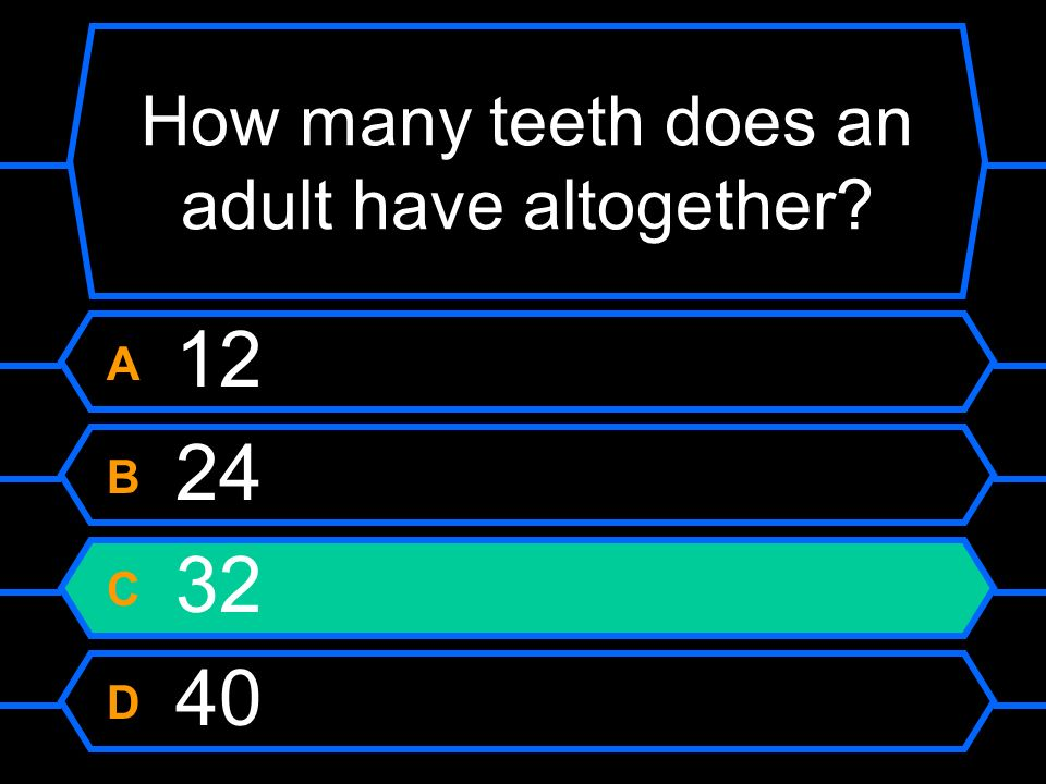 How many teeth does an adult have altogether