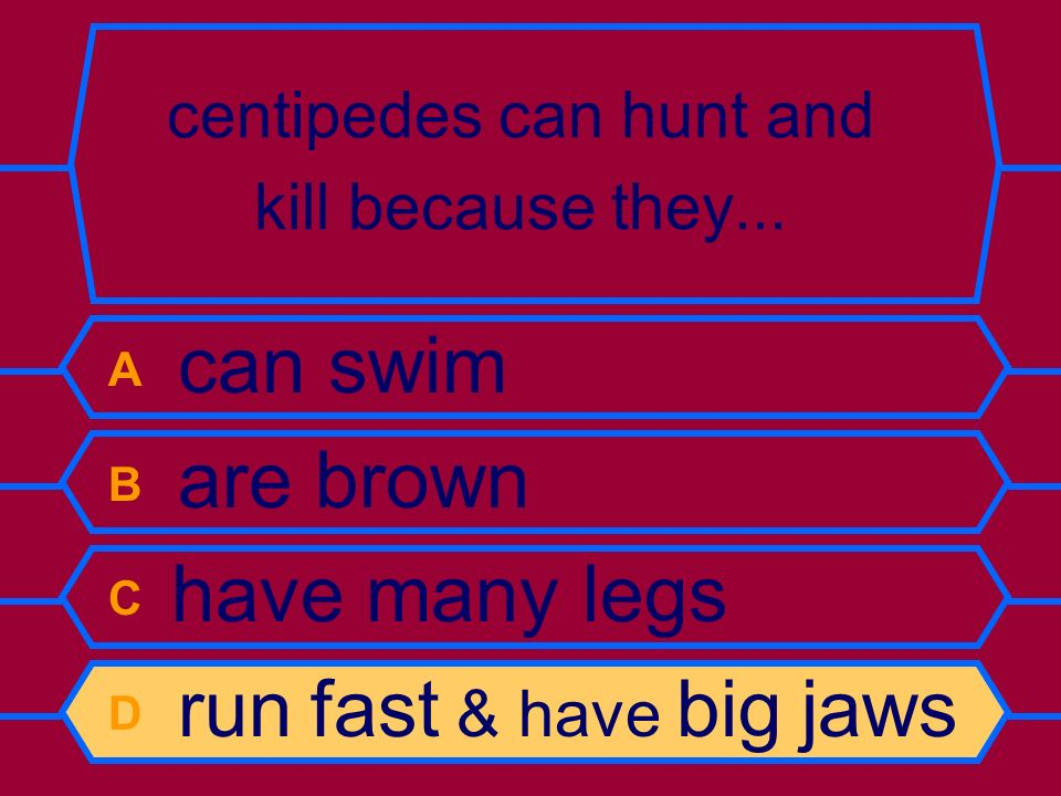 centipedes can hunt and kill because they...
