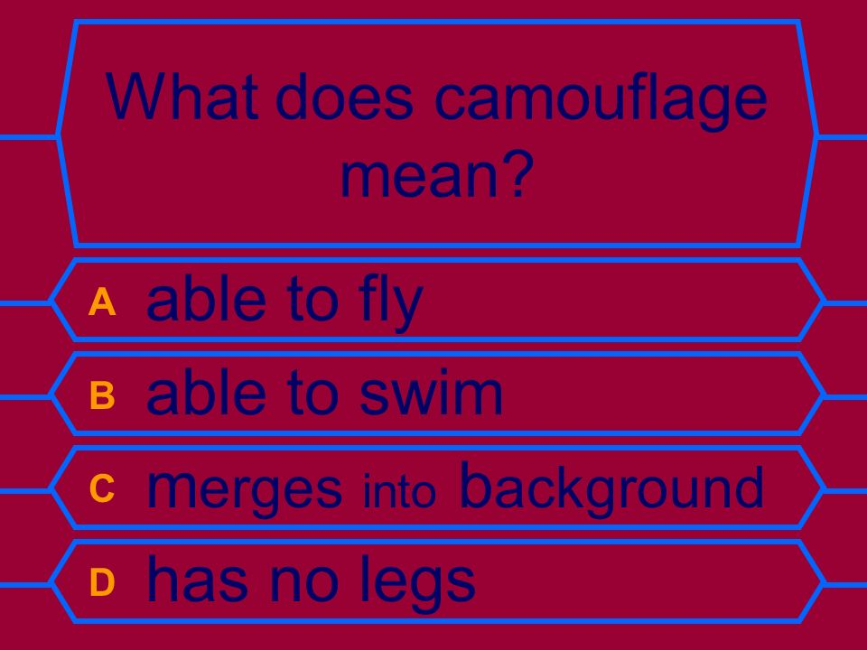 What does camouflage mean