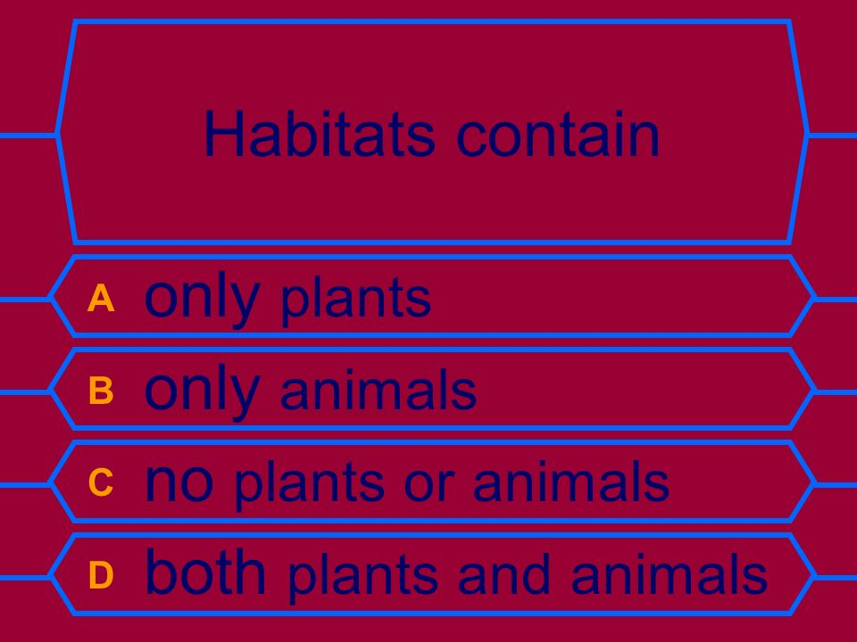 Habitats contain A only plants B only animals C no plants or animals