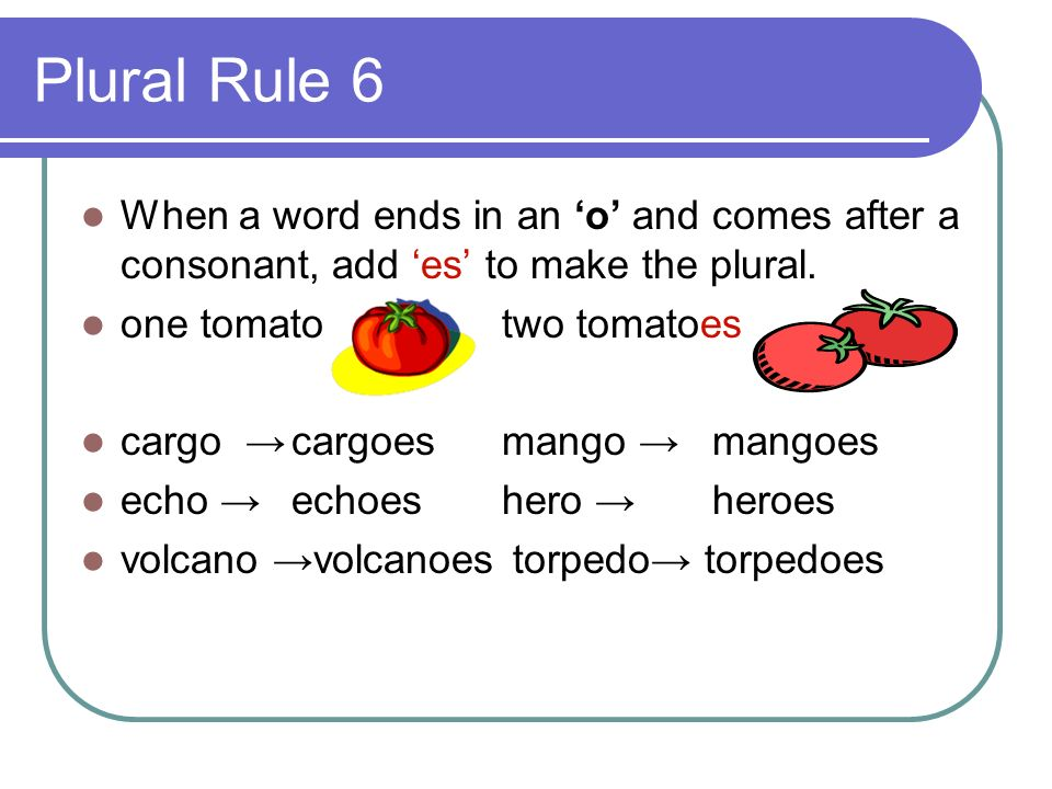 Plural Rule 6 When a word ends in an 'o' and comes after a consonant, add 'es' to make the plural. one tomato two tomatoes.