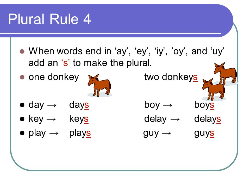 Plural Rule 4 When words end in 'ay', 'ey', 'iy', 'oy', and 'uy' add an 's' to make the plural. one donkey two donkeys.