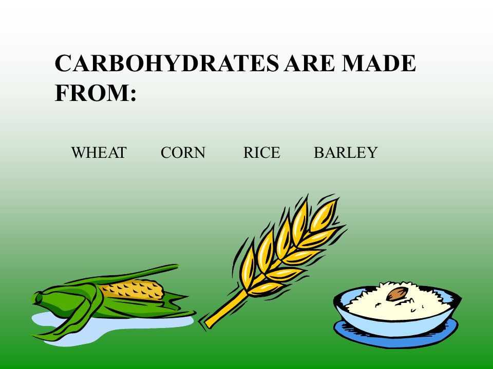 CARBOHYDRATES ARE MADE FROM: