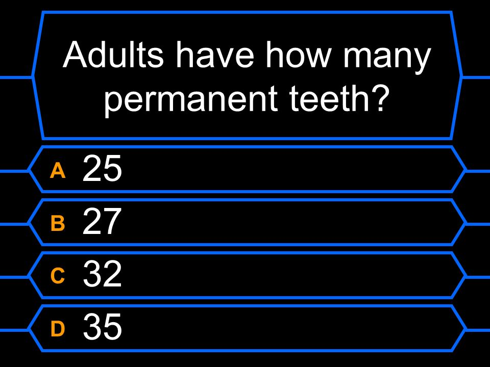 Adults have how many permanent teeth