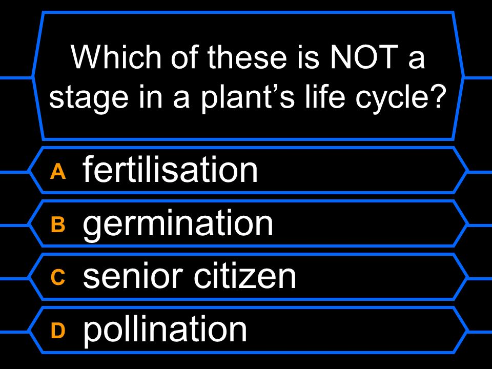 Which of these is NOT a stage in a plant's life cycle