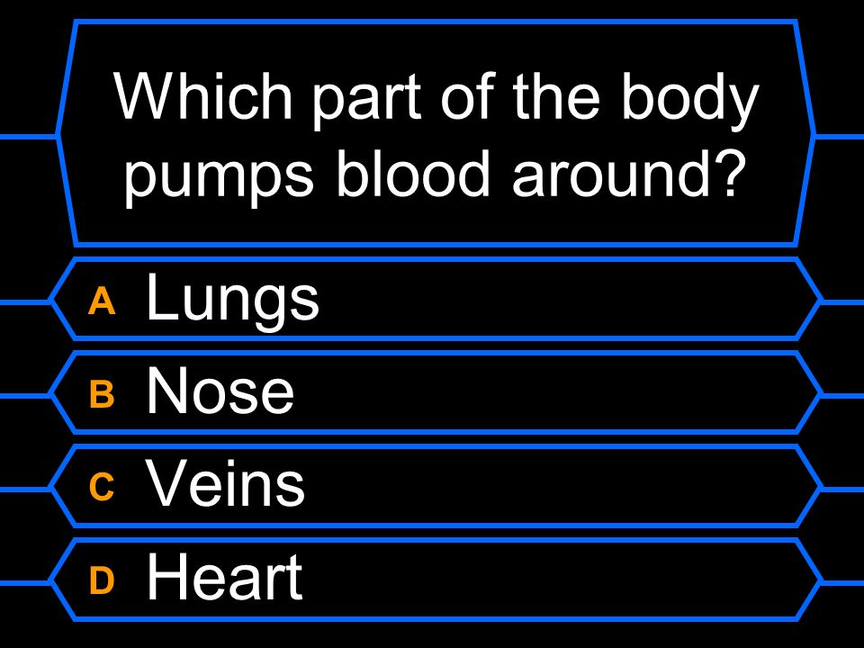 Which part of the body pumps blood around