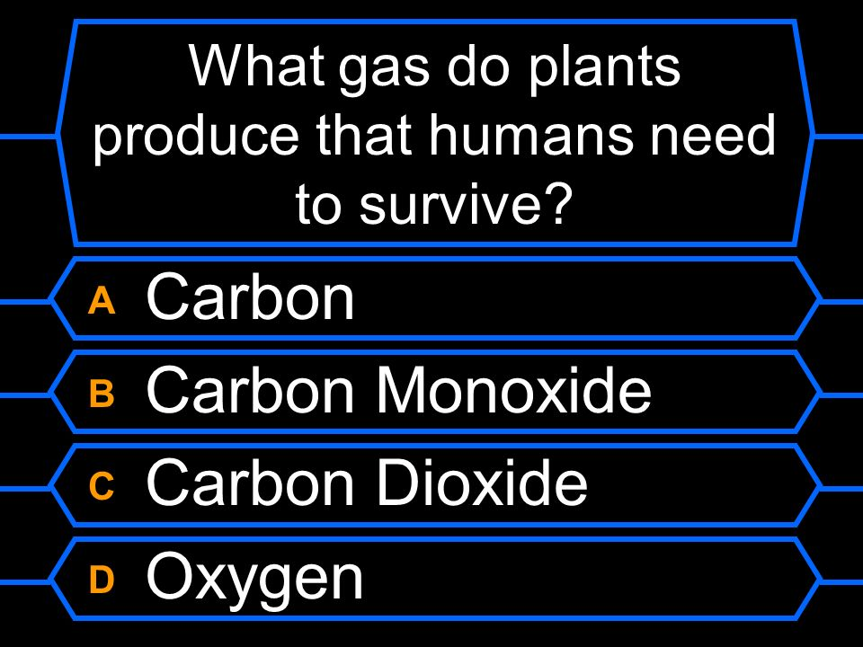 What gas do plants produce that humans need to survive