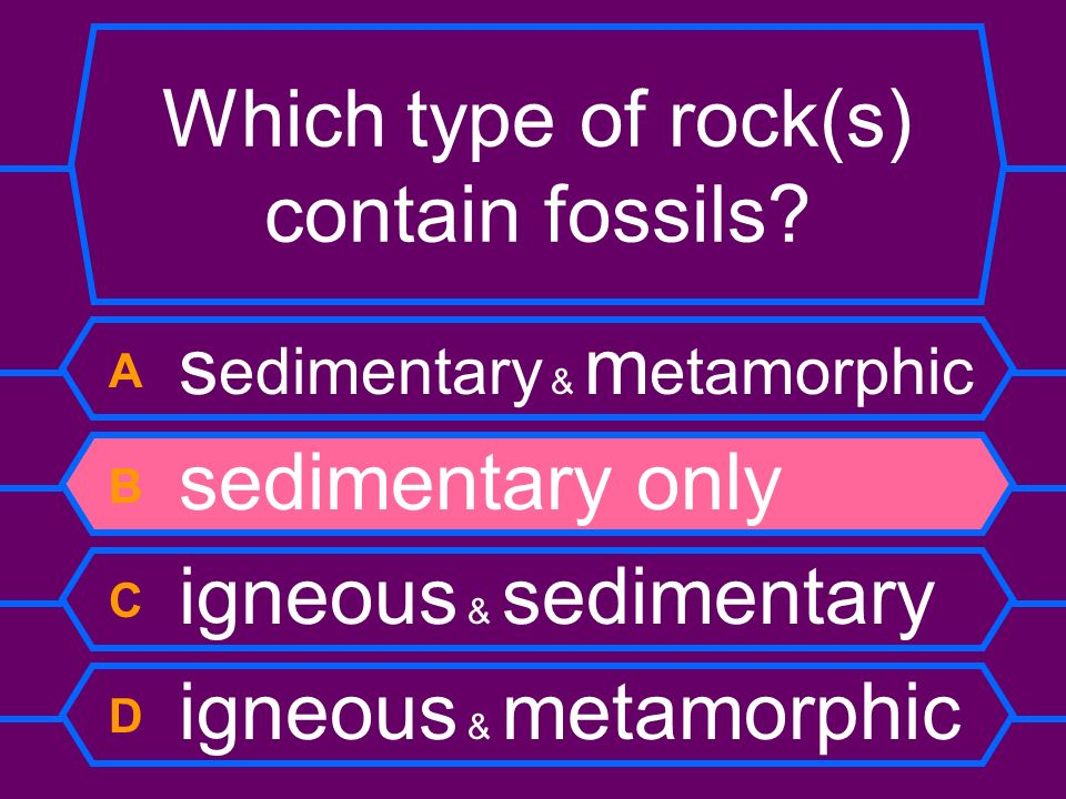 Which type of rock(s) contain fossils