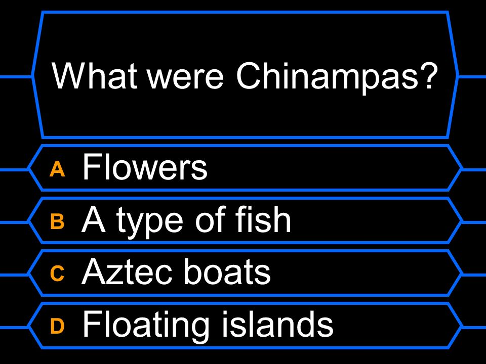What were Chinampas A Flowers B A type of fish C Aztec boats
