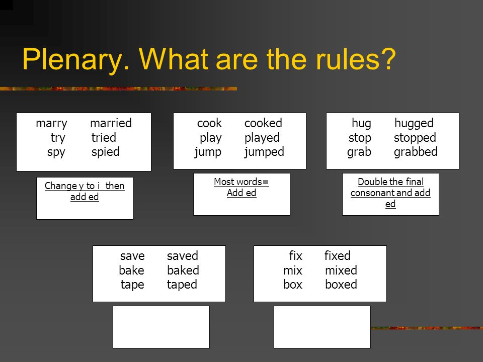 Plenary. What are the rules