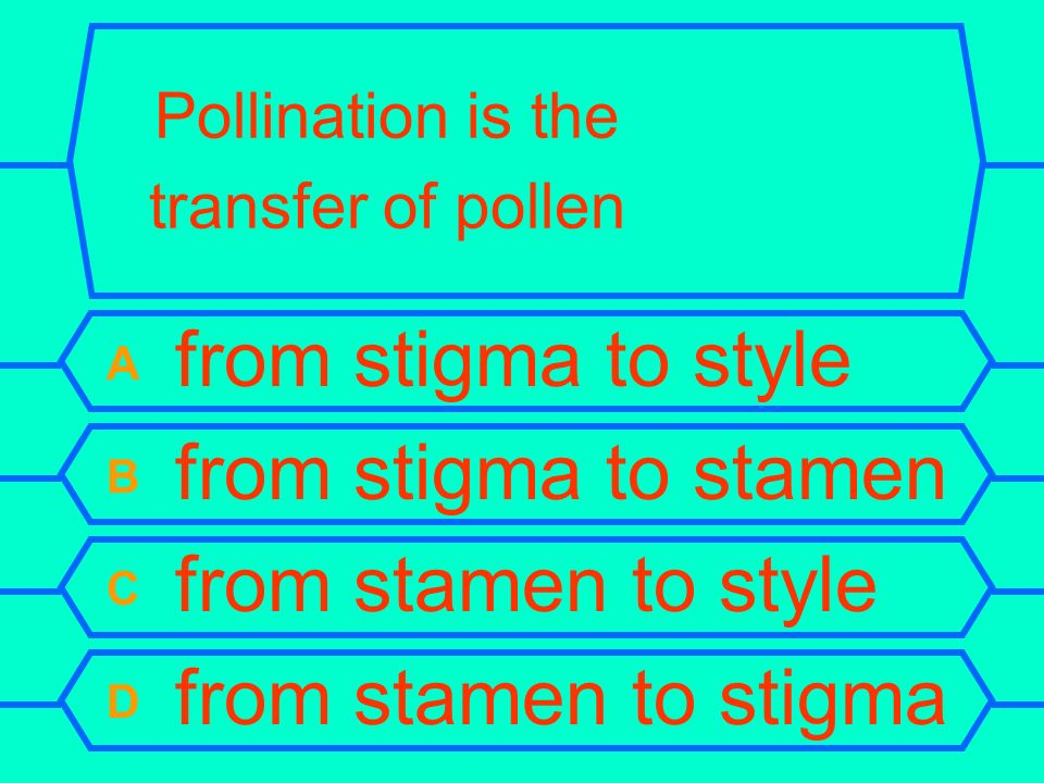 Pollination is the transfer of pollen