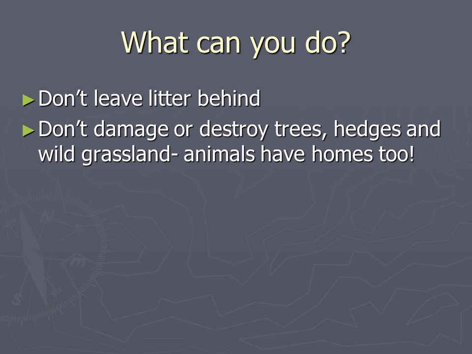 What can you do Don't leave litter behind