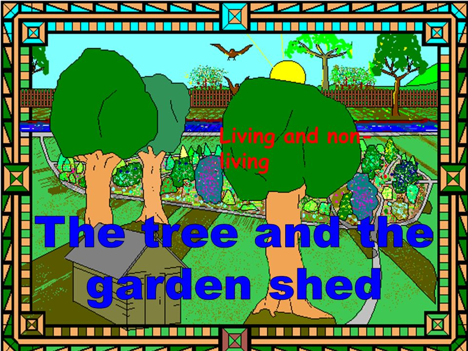 Living and non-living The tree and the garden shed