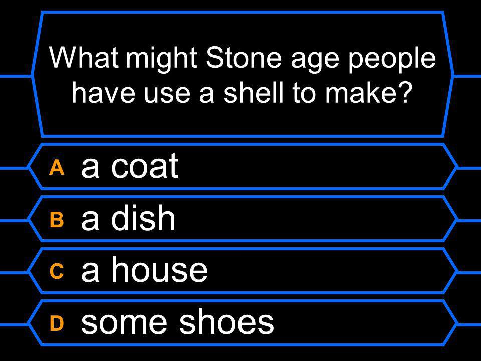 What might Stone age people have use a shell to make