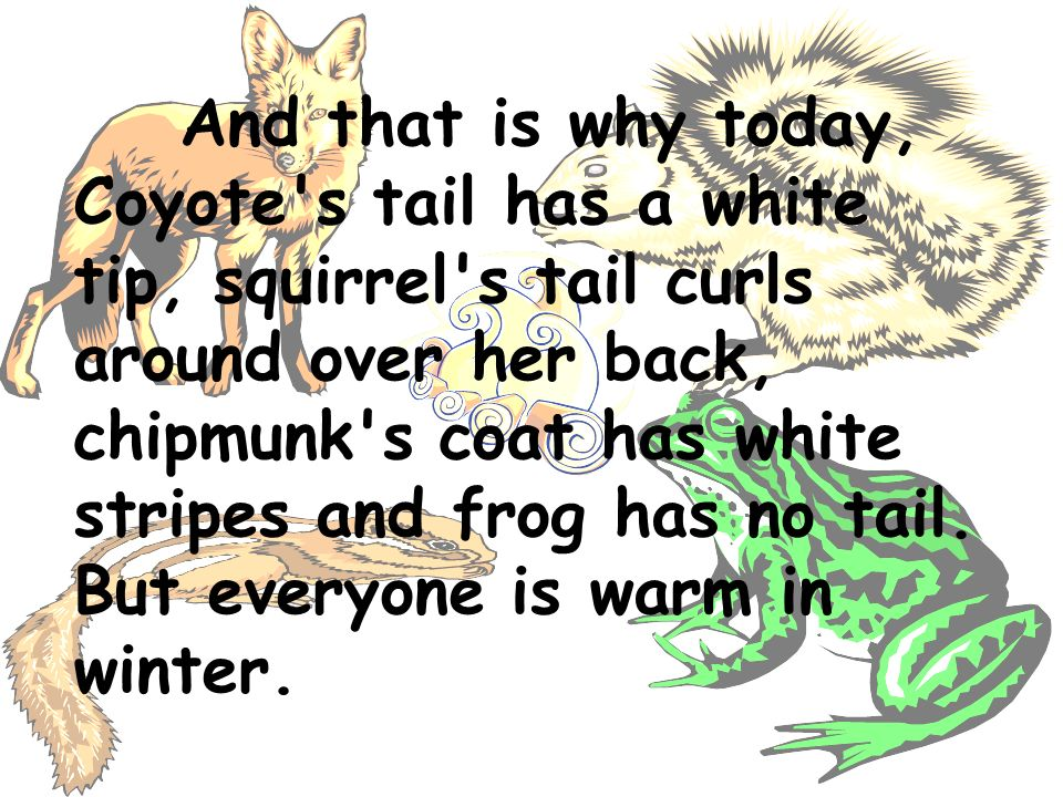 And that is why today, Coyote s tail has a white tip, squirrel s tail curls around over her back, chipmunk s coat has white stripes and frog has no tail.