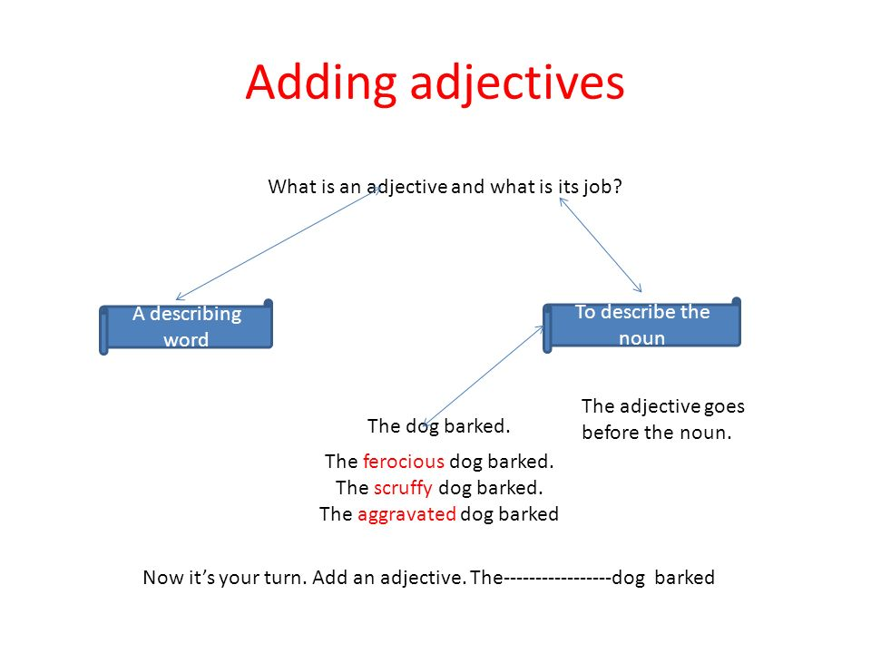 Adding adjectives What is an adjective and what is its job