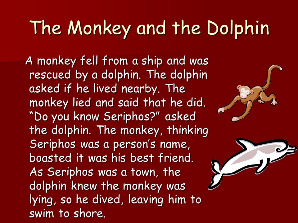 The Monkey and the Dolphin