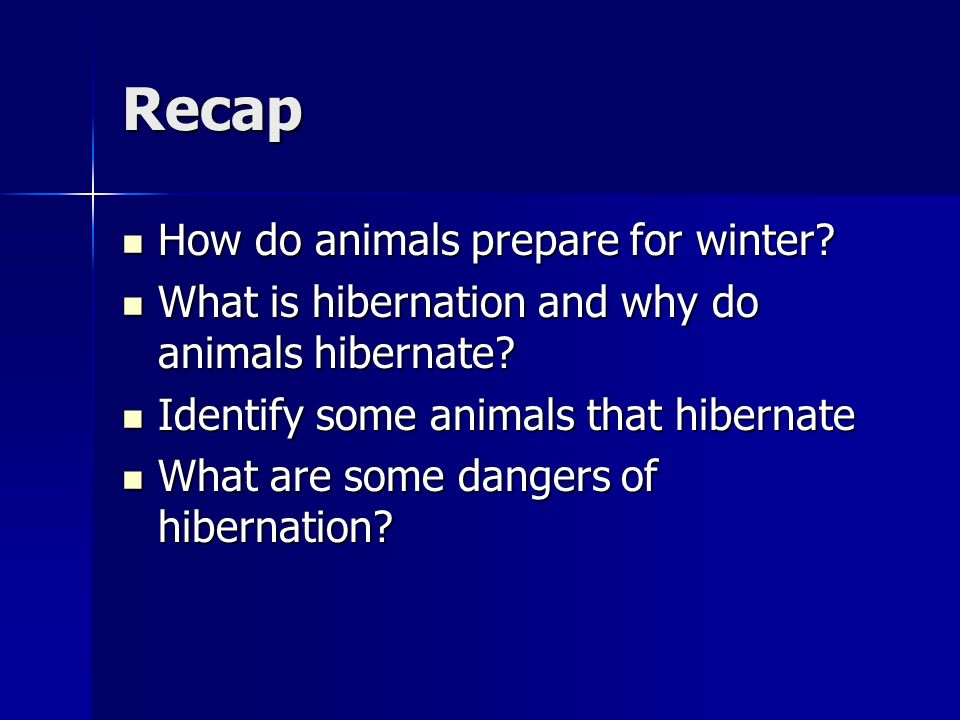 Recap How do animals prepare for winter