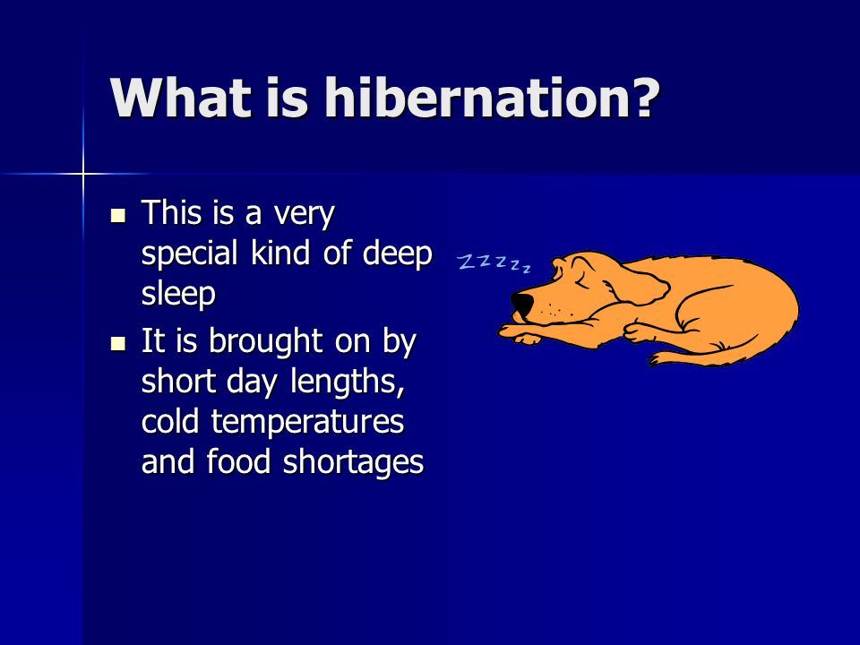 What is hibernation This is a very special kind of deep sleep