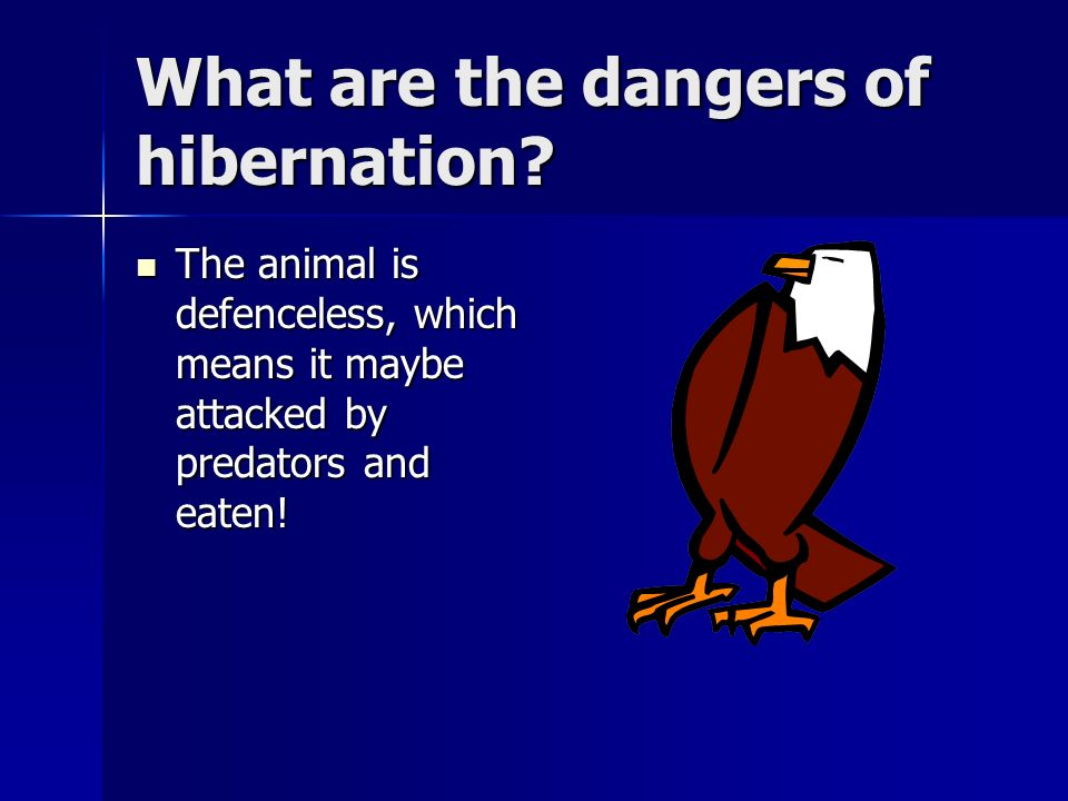 What are the dangers of hibernation
